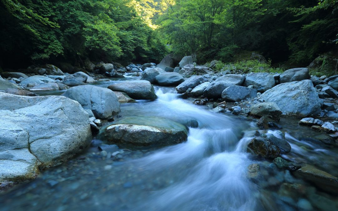 L'energia hidràulica procedent dels rius: com aprofitar una font autòctona i neta
