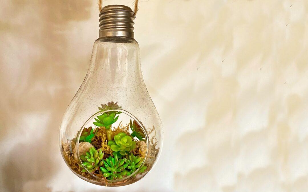 L'energia que subministrem torna a rebre el certificat de procedència de fonts 100% renovables