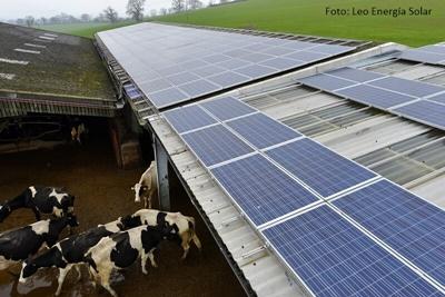 Plaques solars vaques